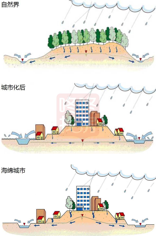 海绵城市的目的是恢复原有的自然雨水循环生态.