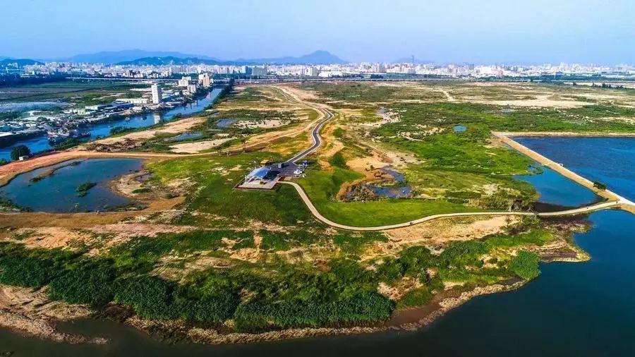 """东莞滨海湾新区又有大动作!""""湾区1号""""项目启动建设!"""