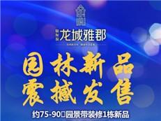 龙城雅郡1栋园景新品12月3日发售 2字头回馈深圳新青年
