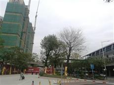 真实的深圳楼市是这样的!--龙岗中心城踩盘实录