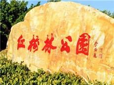 惠州大亚湾红树林城市湿地公园获批国家级湿地公园