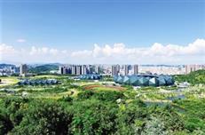 龙岗城市更新新举措:优先推进保障性住房、产业升级项目
