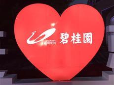 碧桂园惠深区域9盘联动,年底置业进入最佳时机!