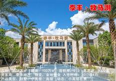 惠湾区域中心 泰丰牧马湖82-115㎡小高层入市【配套篇】