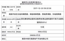 中泰集团强势回归衡阳 2.89亿斩获衡阳市高新开发区陆家新区地块