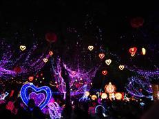 惠州西湖灯光随拍