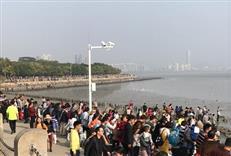 空城?不!这才是真实的春节时的深圳!