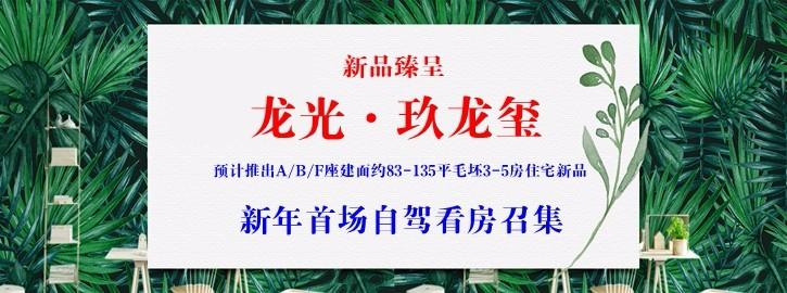 【咚咚看房团】3月3日龙光玖龙玺新品臻呈,新年首场自驾看房召集