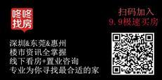 碧桂园新闻123
