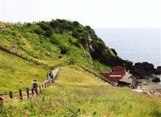 中国人投资济州岛房产逐年增加 持房产面积近千万平米