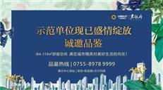 """大湾区CBD:继前海之后,深圳将崛起一座""""海洋新城"""""""