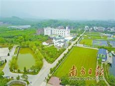 惠州今年将建设5个森林小镇 厚植山水城市绿的底色