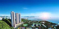 慢行15公里滨海长廊,才是深圳美景的正确打开方式!