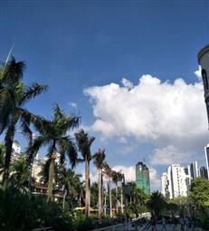 深圳交通建设大提速,将打造成粤港澳大湾区国际性综合交通枢纽!