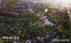 在深圳月入1.5万,也能轻松买房?