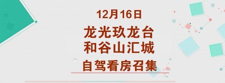 12月16日龙光玖龙台、和谷山汇城自驾看房召集