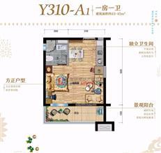 全生态温泉大城 碧桂园润杨溪谷43-89㎡公寓户型分析