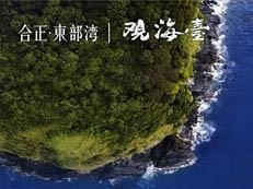 巽寮湾一线海景资产 合正东部湾3.16盛大开盘