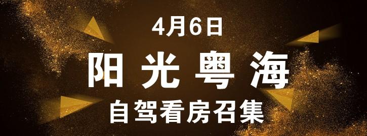 【咚咚看房团】4月6日阳光粤海自驾看房召集