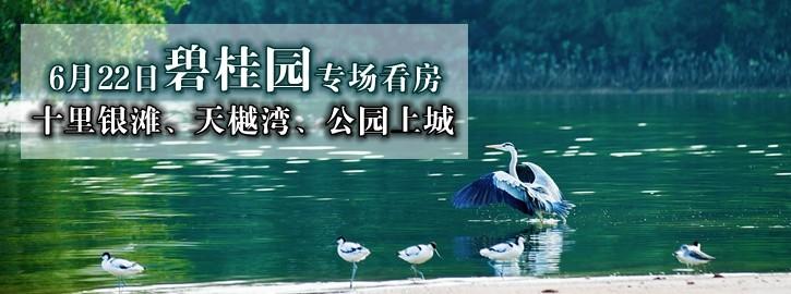 【咚咚看房团】6月22日惠州碧桂园专场看房召集