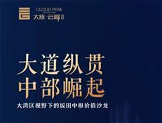 王识歧:坂田定位亚太ICT产业中枢核心区 2025年规模破万亿
