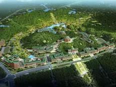 好消息!中大深圳校区首栋建筑主体已封顶!明年将迎来新生-咚咚地产头条