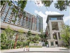 NEW!6万+买10万+豪宅片区 +三大次新盘自然资源,爆发力的投资>
