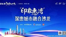 大咖解码丨深惠融城下临深投资置业该怎么选?
