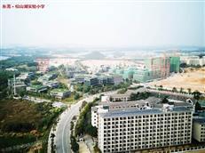 @东莞高考生,2020年广东高考3月23日开始补报名