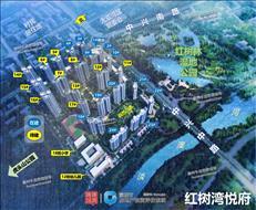 【惠深40】深大城际激活大亚湾中心区——生长中的红树湾悦府!