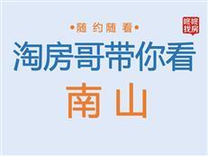 【南山】豪宅盘丨别墅+大平层,4288 万~7500 万区间-咚咚地产头条