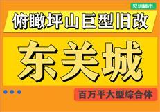 俯瞰坪山巨型旧改——东关城(or 东关珺府)
