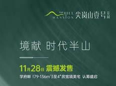【尖岗山壹号花园】前海新安低密学府美宅 11月28日 震撼发售