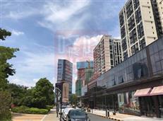 龙中2字头精装商务公寓,金地龙城中央三期