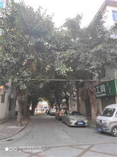 宝安区中心区回迁房-福晟集团45区 47区旧改 双子塔地标!
